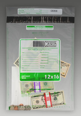 Clear Currency Bags with Pocket
